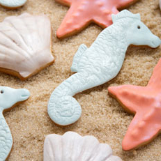 Seashell and Seahorses Cookies