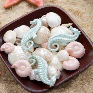 Seashell and Seahorses Candies