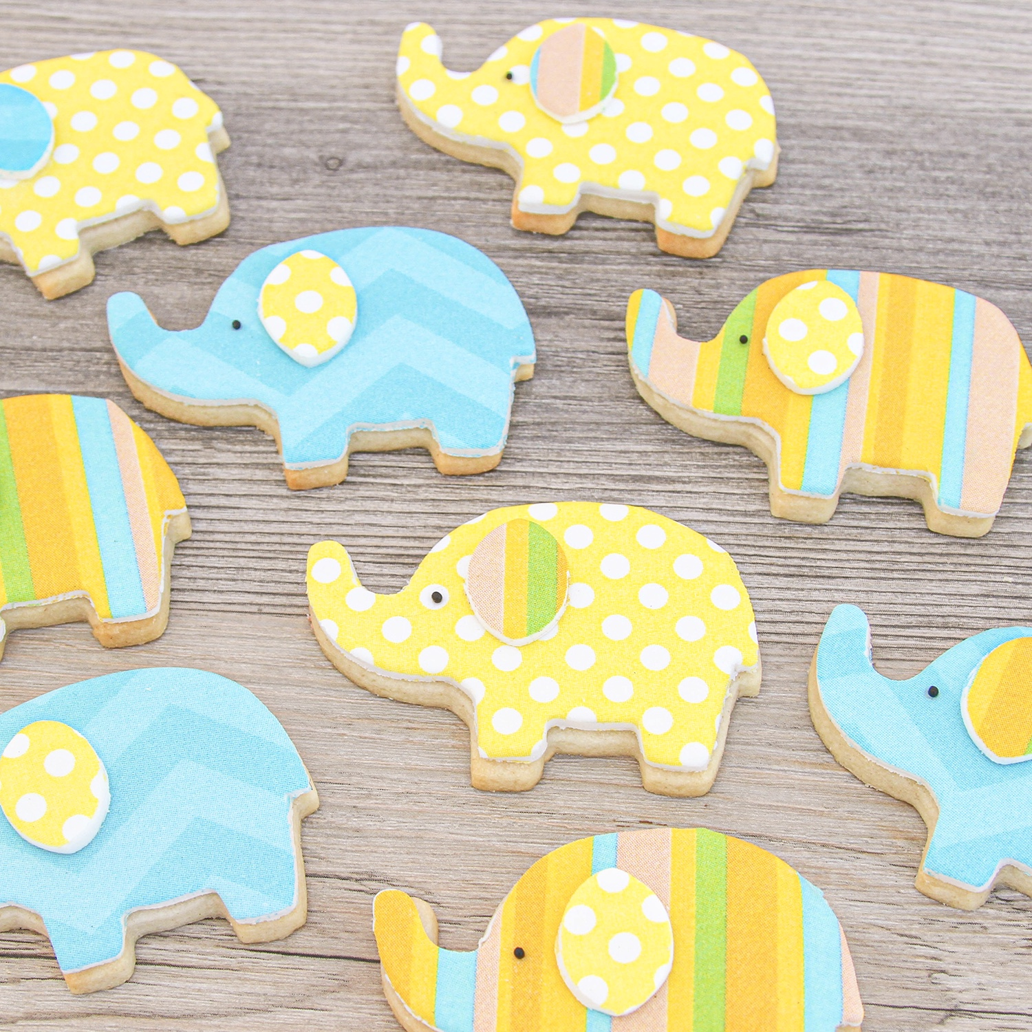 Printed Elephant Cookies