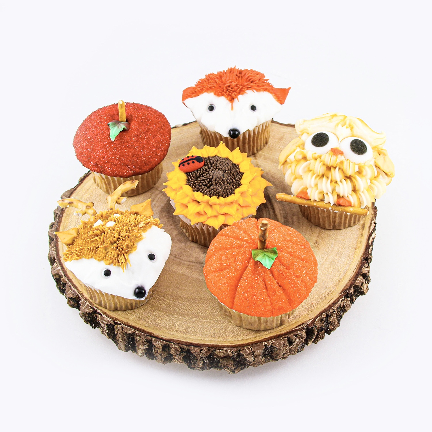 Assorted Fall Cupcakes
