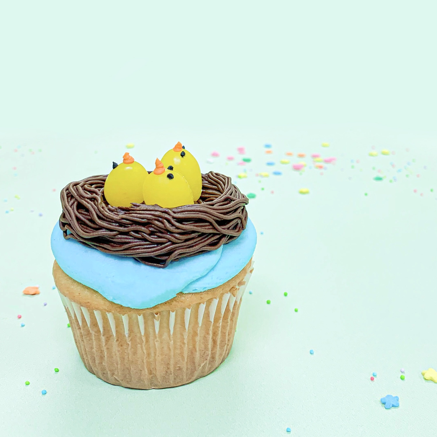 Nest with Birds Cupcake