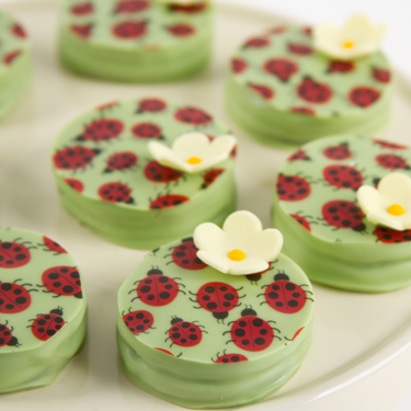 Ladybug and Flower Dipped Sandwich Cookies