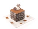 Snowflake Chocolate Transfer Dessert Square